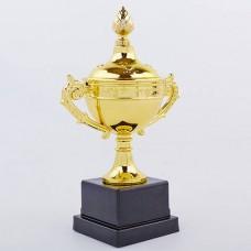 Кубок спортивный с ручками и крышкой SKILL C-A5058G (пластик, h-24,5см, b-15см, d чаши-8см, золото)