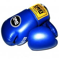 Боксерские перчатки BWS CLUB