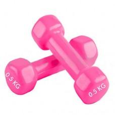 Гантели для фитнеса с виниловым покрытием Радуга  (2* 0.5 кг) TA-0001-0,5-P