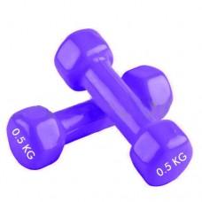 Гантели для фитнеса с виниловым покрытием Радуга  (2* 0.5 кг) TA-0001-0,5-V