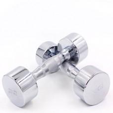 Гантель для фитнеса хромированная SC-8017-3 (1*3 кг)